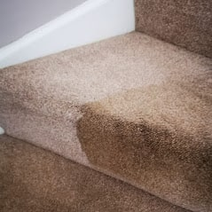 1stClass Carpet Cleaners Leicester dirty stairs in Hinckley, Leicestershire (52.541111, -1.373870)