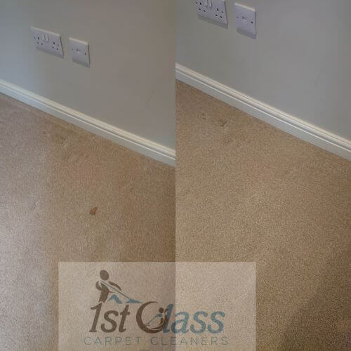 Scraptoft carpet cleaning, cleaner, Leicester