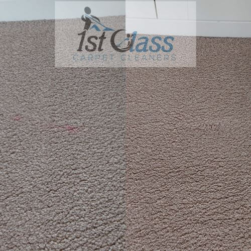 stained wool carpet scraptoft