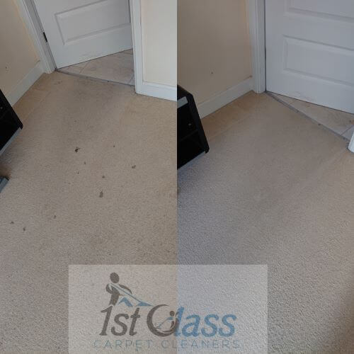 Carpet cleaning Glenfield, Leicester Lat Long (52.644463, -1.212740) GPS Coordinates 52° 38' 40.0668'' N 1° 12' 45.864'' W