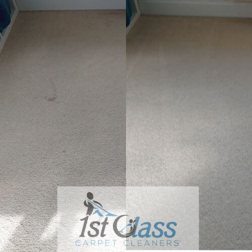 profession carpet and stain removal Glenfield, Leicester (52.648940, -1.204740) 52° 38' 56.184'' N 1° 12' 17.064'' W
