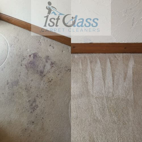 red wine stain, Carpet cleaning Loughborough, carpet Stain removal Loughborough. nanpantan road. 52.7511867 -1.2519504