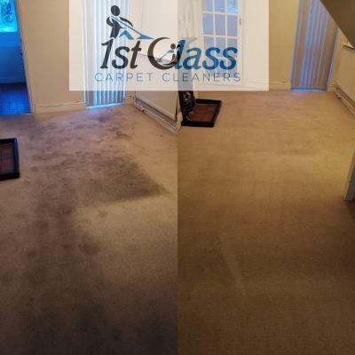 carpet cleaning castle donington