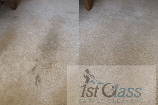 Carpet cleaning Hamilton, Leicester Carpet cleaner Leicester Lat Long (52.661790, -1.057800) GPS Coordinates 52° 39' 42.444'' N 1° 3' 28.08'' W